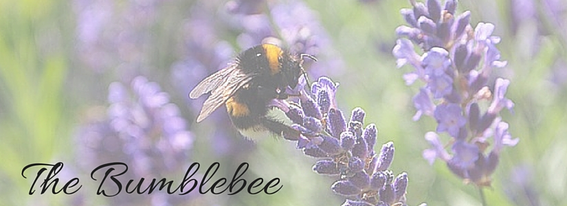 The one about Bumblebees